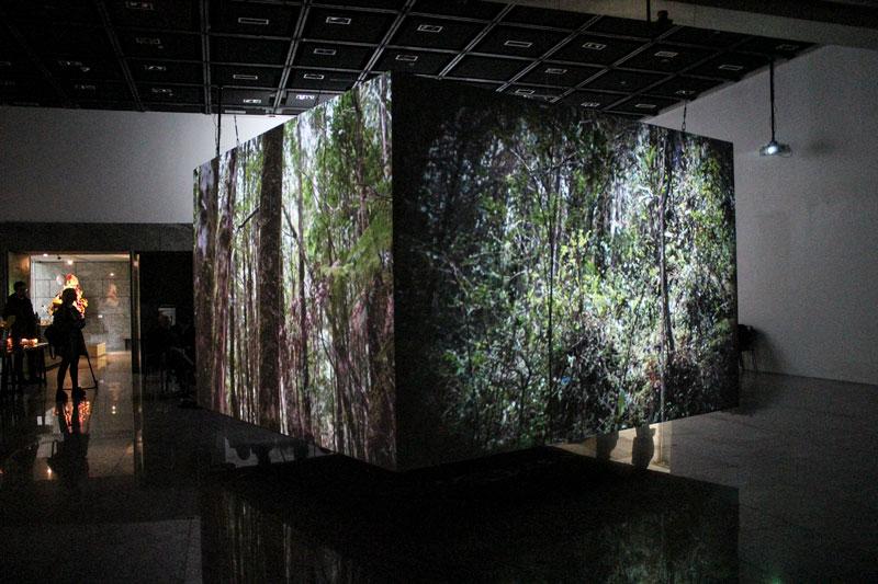 """Sesion """"Ecosistema"""" de Bernardo Oyarzún en Sala de Arte CCU"""